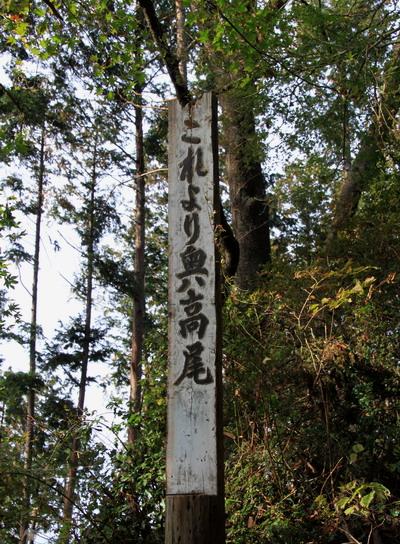 20111105takaosan-006.jpg
