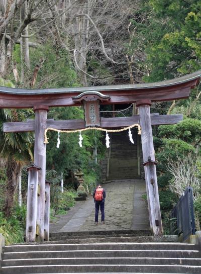 20120418kagenobu-004.jpg