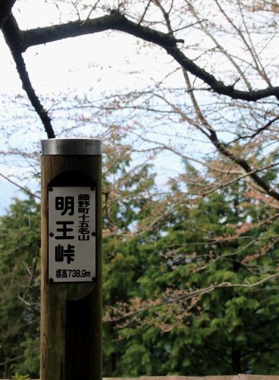 20120418kagenobu-010.jpg