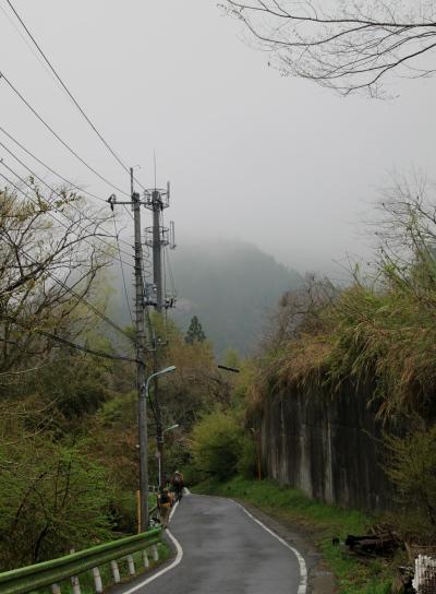 20120425kagenobu-001.jpg