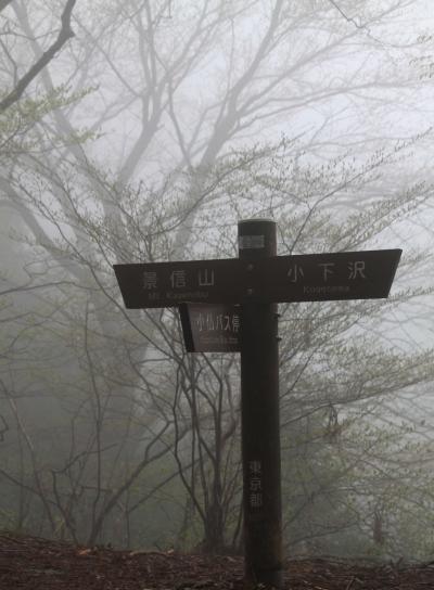 20120425kagenobu-004.jpg