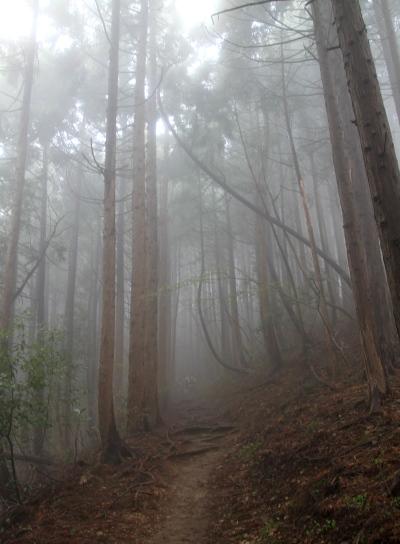 20120425kagenobu-005.jpg