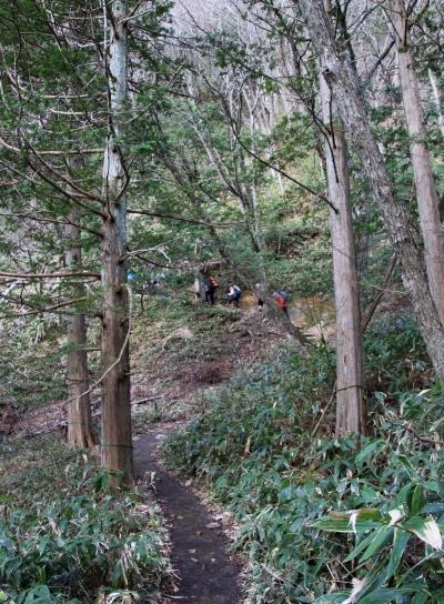20120429tubakuro-002.jpg