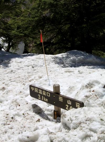 20120429tubakuro-011.jpg