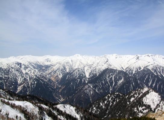 20120429tubakuro-023.jpg