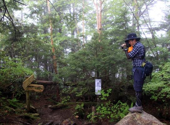 20120713mizugaki-010.jpg