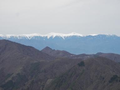 三つ峠から南ア.JPG