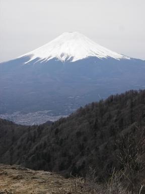 頂上から富士山.JPG