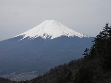尾根からの富士山.JPG