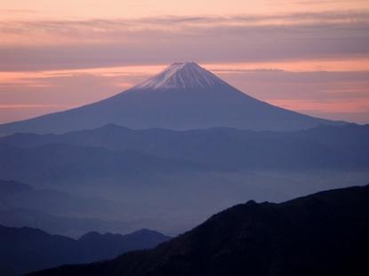 kobushi20081123-002.JPG
