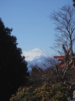 ooyama20080102-009.JPG
