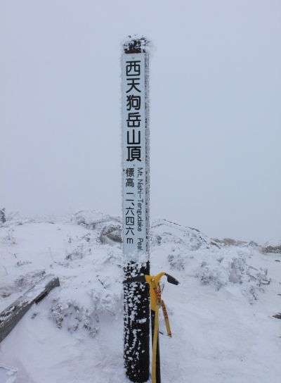 tengu20101225-007.JPG