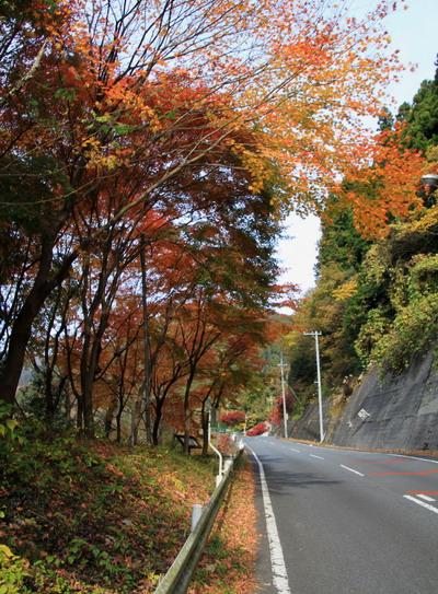 20111127bounoori-003.jpg