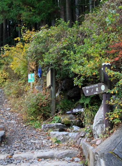 20111127bounoori-004.jpg