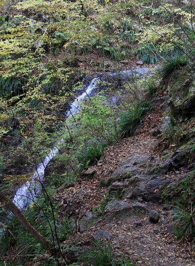 20111127bounoori-006.jpg