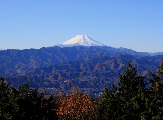 20111209jinba-007.jpg