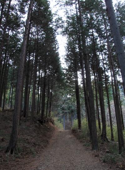 20120103takakawa-003.JPG