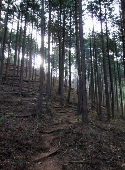 20120103takakawa-004.JPG