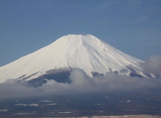 20120320ishiwari-016.JPG