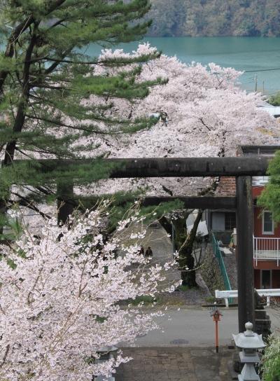 20120418kagenobu-002.jpg