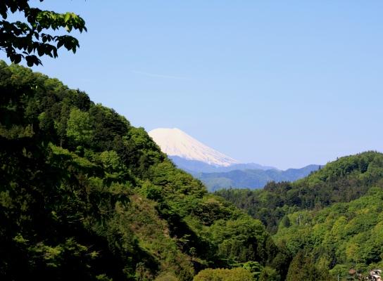 20120513jinba-002.jpg