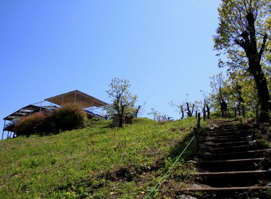 20120513jinba-010.jpg