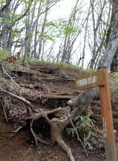 20120529daibosatu-003.jpg
