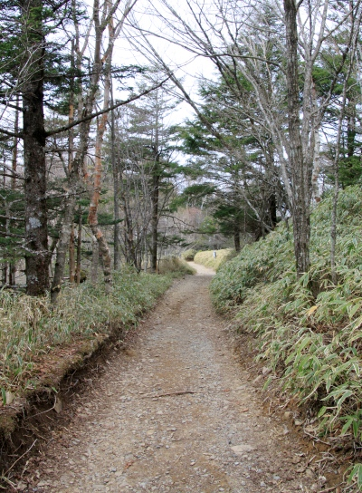 20120529daibosatu-017.jpg
