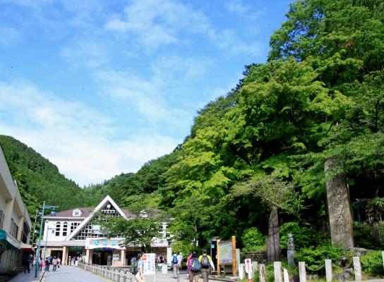 20120610takaosan-002.jpg