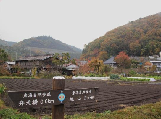 20121124shiroyama-003.jpg