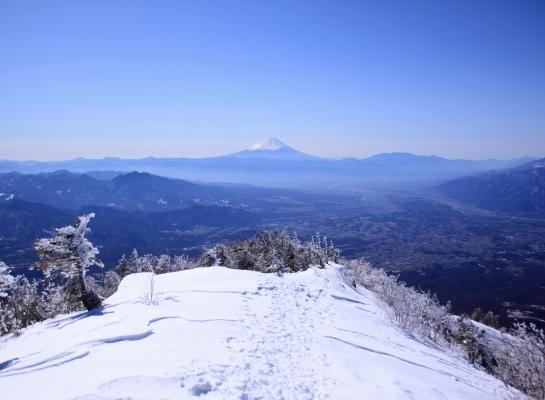 20140322mitugashira-026.jpg