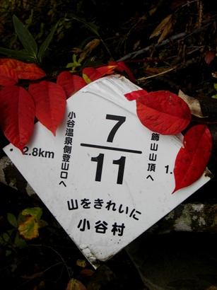 amakazari20091210-008.JPG