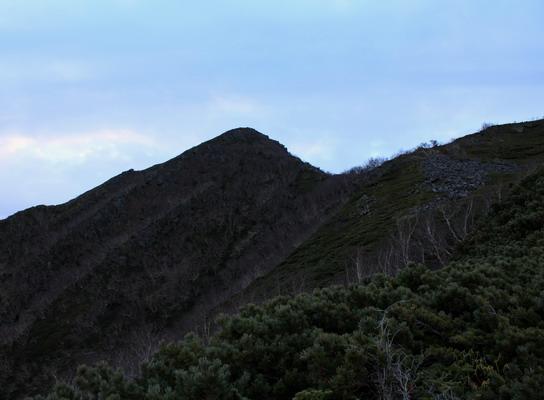 hayakawa20101107-003.jpg