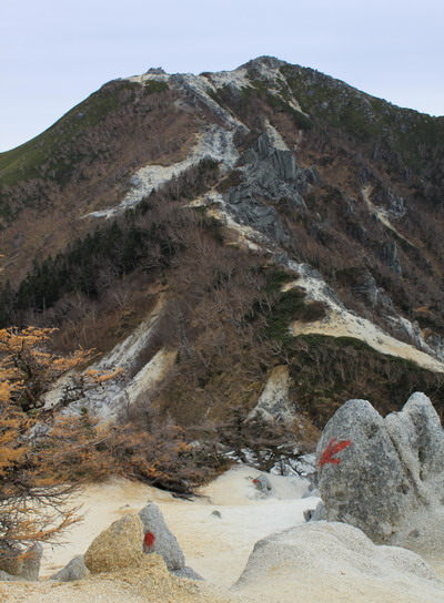 hayakawa20101107-007.jpg
