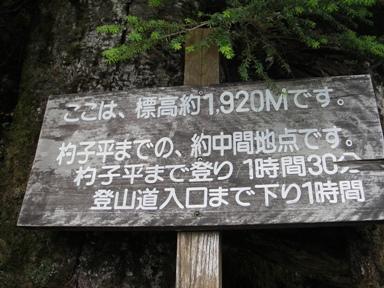 kasa20070818-006.JPG