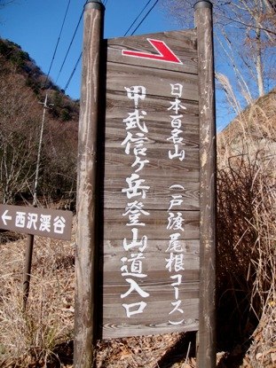 kobushi20081126-001.JPG