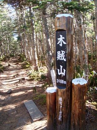 kobushi20081126-006.JPG