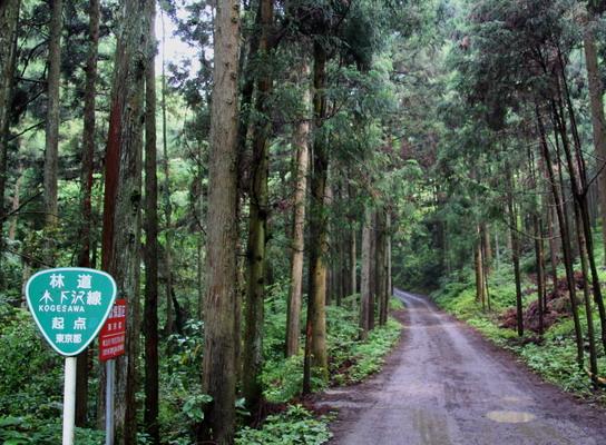 kogesawa20110621-002.jpg