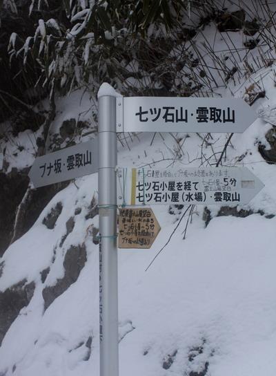 kumotori20110213-005.jpg