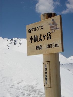 senjyo20070503-014.JPG