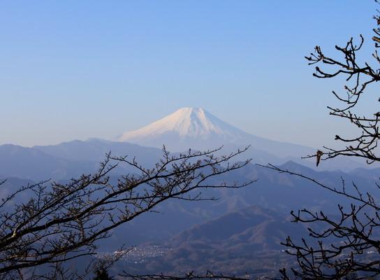 shoto20110215-007.jpg