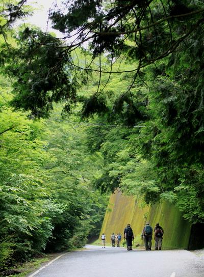 sokozawa20100714-002.jpg