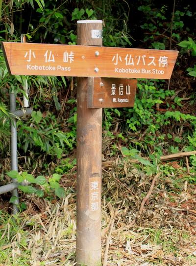 sokozawa20100714-003.jpg