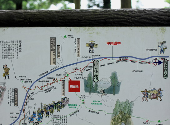 sokozawa20100714-012.jpg