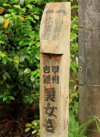 sokozawa20100714-017.jpg