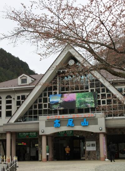 takao20110403-001.JPG