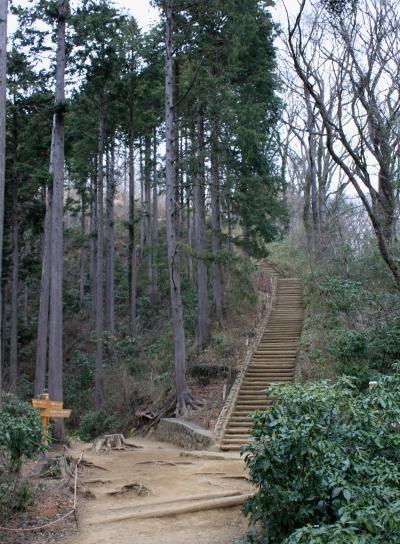 takao20110403-006.JPG