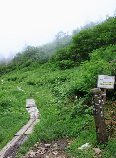 tugami20110821-017.jpg